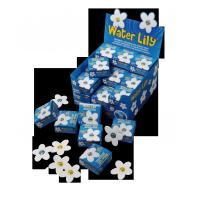 WATERLILY présentoir de 36 boîtes